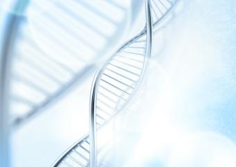 藤野クリニックのDNA検査 画像